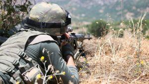 Haftanin'de 12 terörist etkisiz hale getirildi