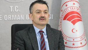 Bakan Pakdemirli: Türkiye, tarım ve gıdada ihracatçı bir ülkedir