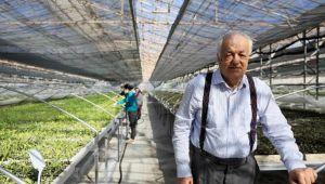 Antalya'dan dünyaya sebze ve meyve ihraç ediliyor