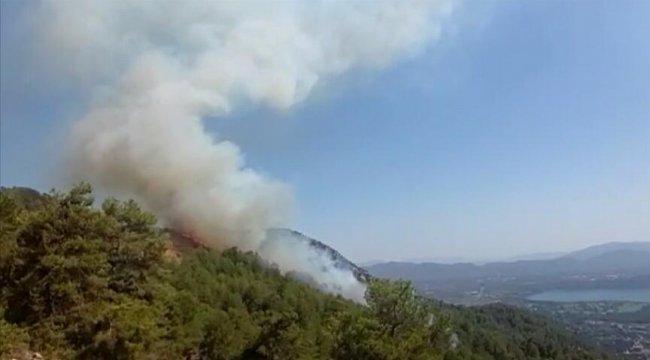 TÜKDES'den Orman yangınlarını fırsata çevirenleri şikayet edin çağrısı